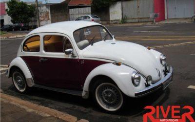Relíquias Automotivas | Fusca 1300 74 de José Raimundo